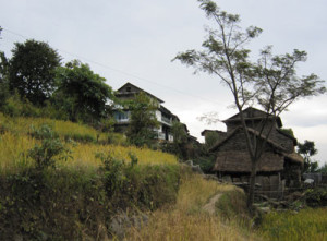 Home_stay4